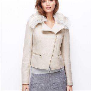 Ann Taylor off white moto zipper wool jacket Sz XS